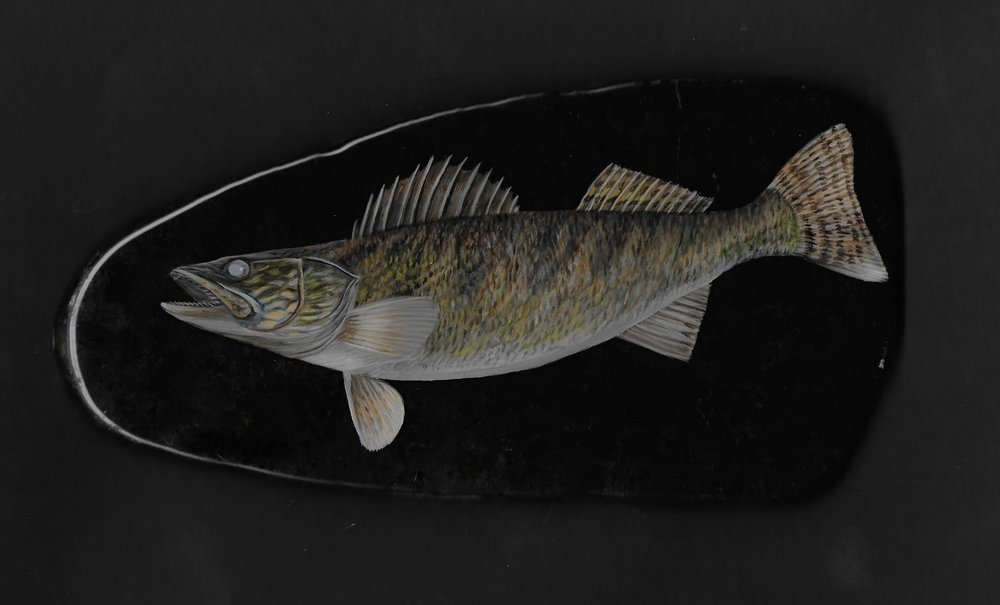 "Walleye/Jade 3 x 7""  $185."