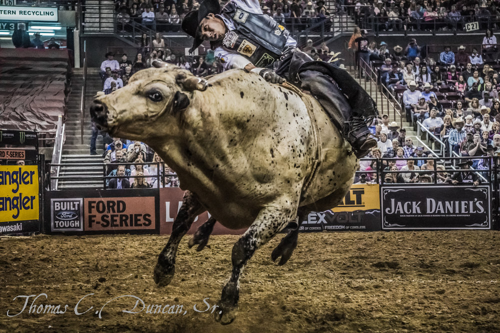 Bull Rider Marco Eguchi