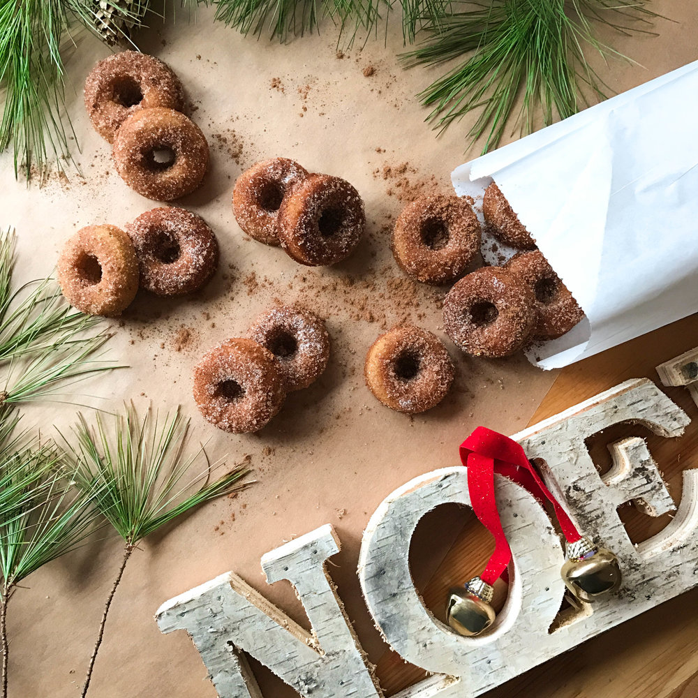 Mini Cinnamon Carnival Donuts