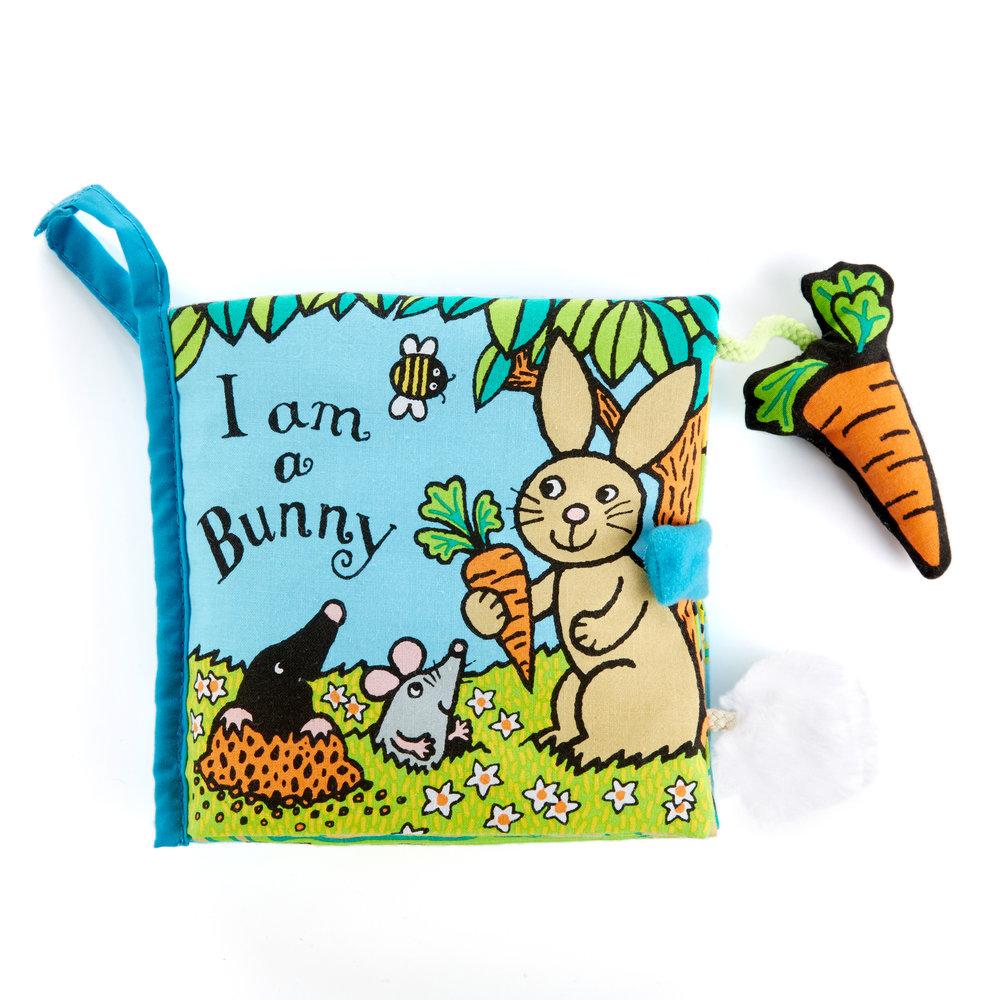 06414-LJC I Am A Bunny Book 01.jpg
