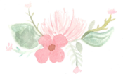 Border with Pink Flowers.png