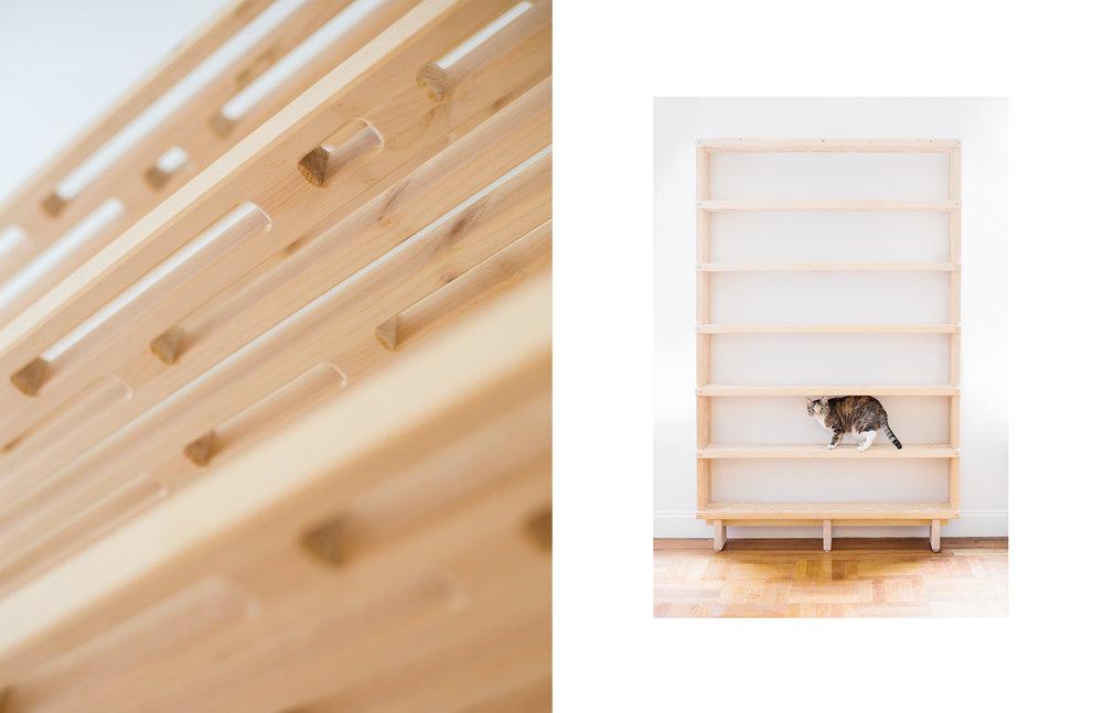 Ali_Bookcase-4.jpg