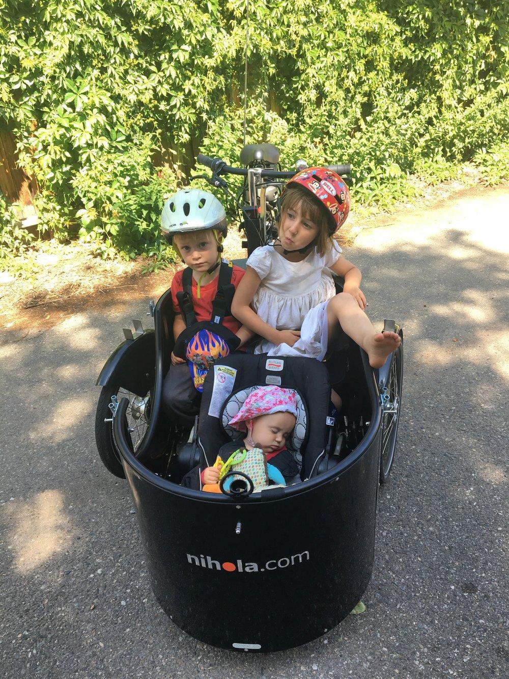 kids in cargo bike.JPG