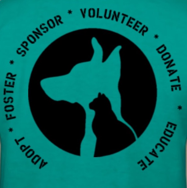 Back of the T-shirt in teal