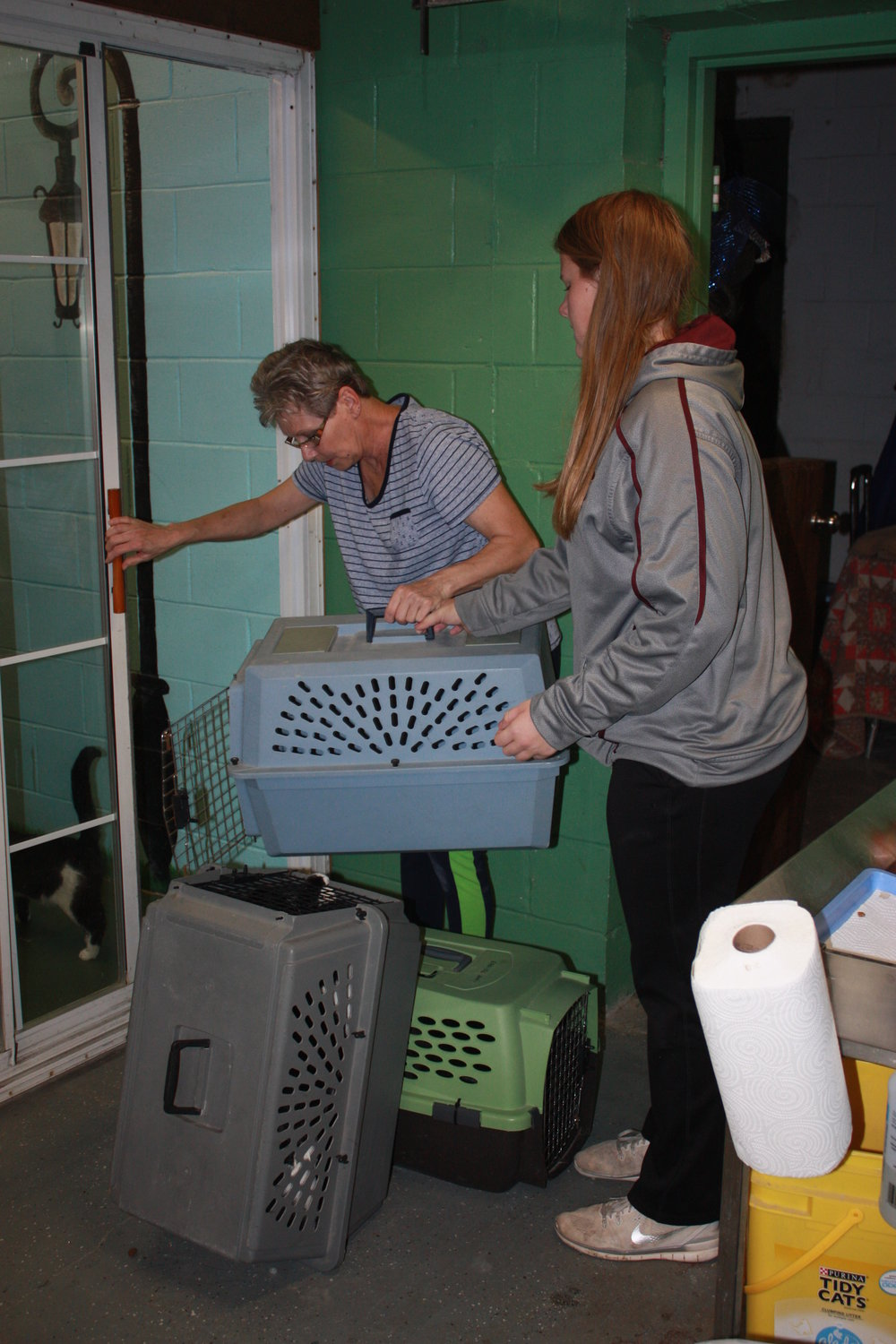 Chris and Allison collecting the free roam kitties so they can clean up their space.