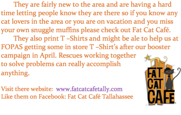 Fat Cat Cafe 2.png