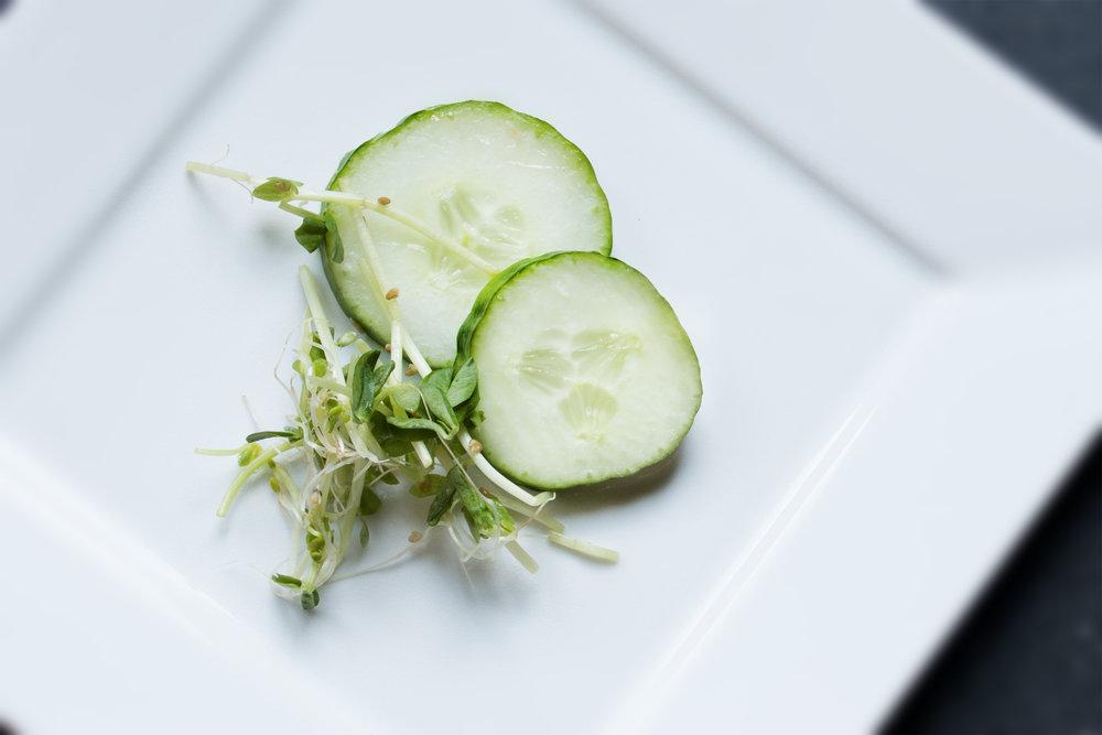 Cucumbers_1.jpg