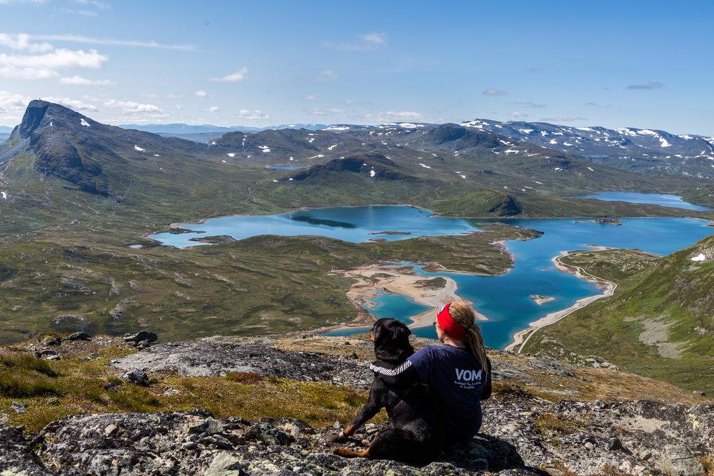 Toppen av Bitihorn helt til venstre i bildet.