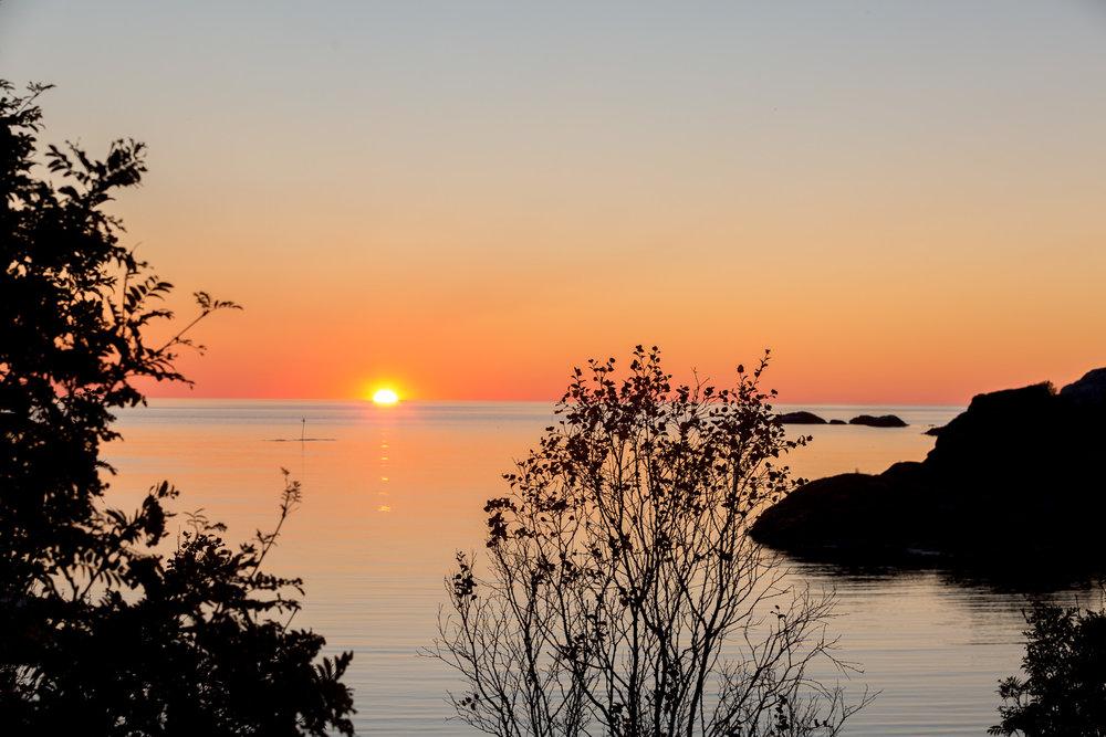 Utsikt rett i nærheten av  Hamn i Senja.
