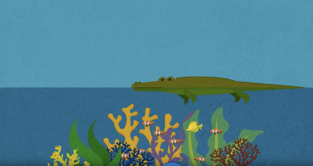 little fish animation