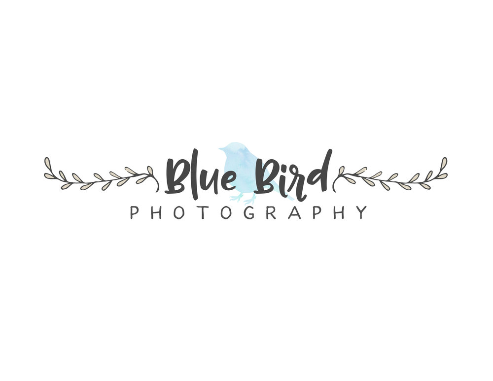 blue bird logo 1.jpg