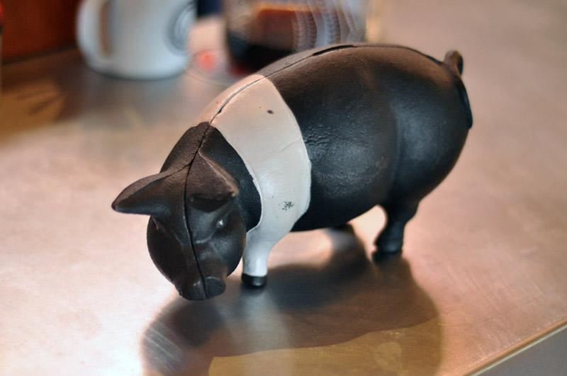 COHINO_Pig14.jpg