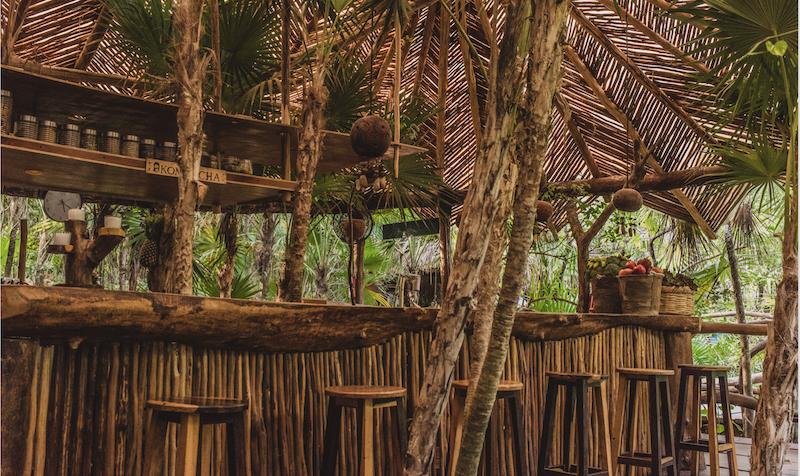 Azulik Cenote Bar 1.png