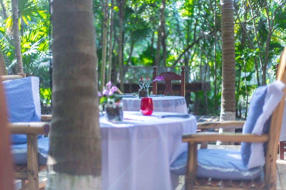 Azulik Cenote Bar 7.jpg