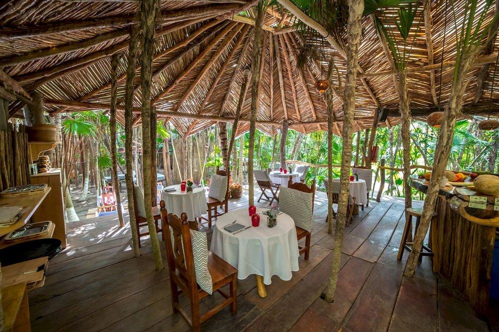 Azulik Cenote Bar Banner.jpg