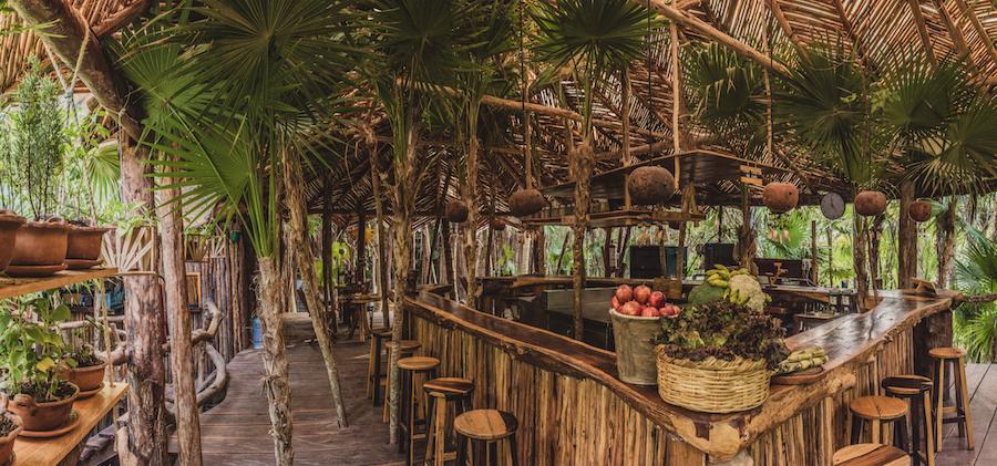 Azulik Cenote Bar 4.png