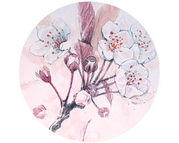 CherryBlossomFeature.jpg