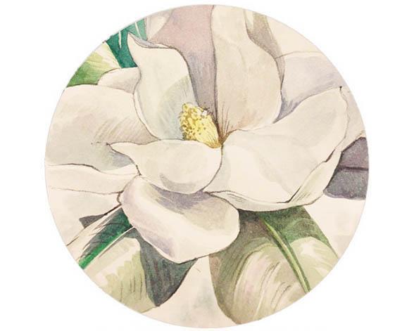 MagnoliaFeature.jpg