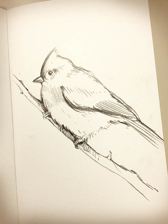 snowbird2