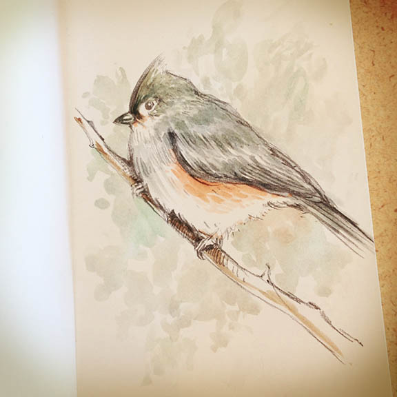 snowbird3