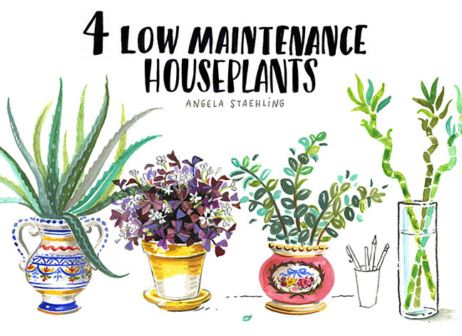 Blog 4 Houseplants1.jpg