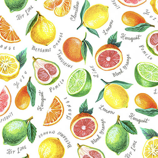 Citrus Pattern1.jpg