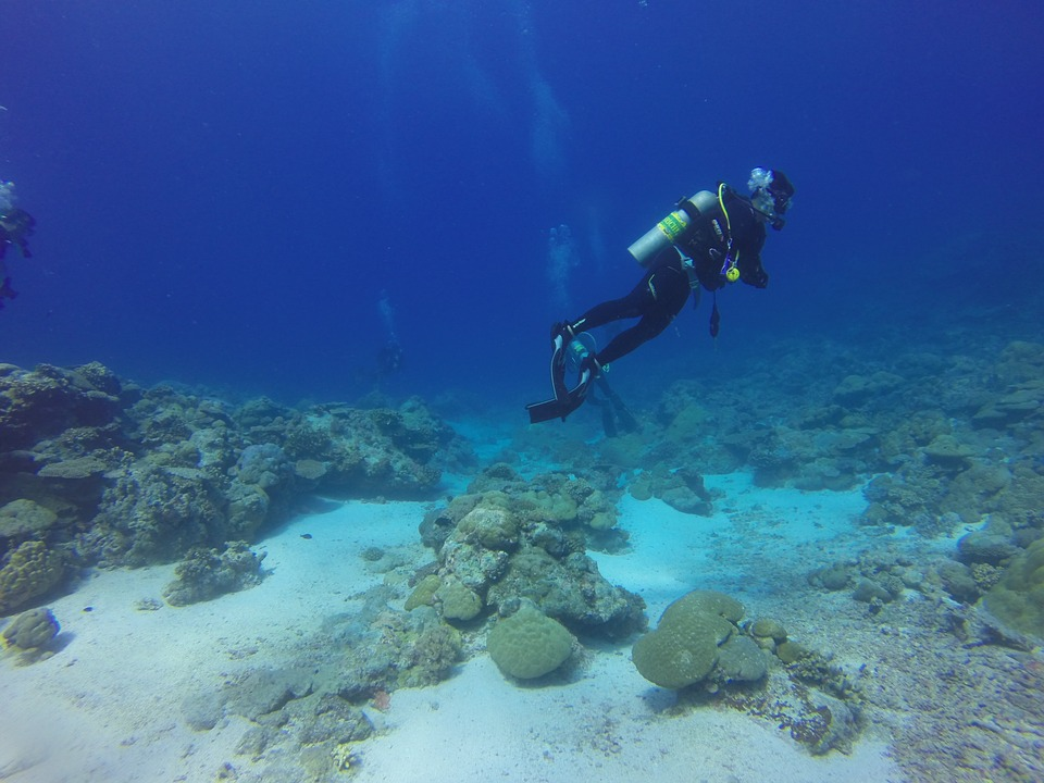 intro-scuba-learn-diving-maui.jpg