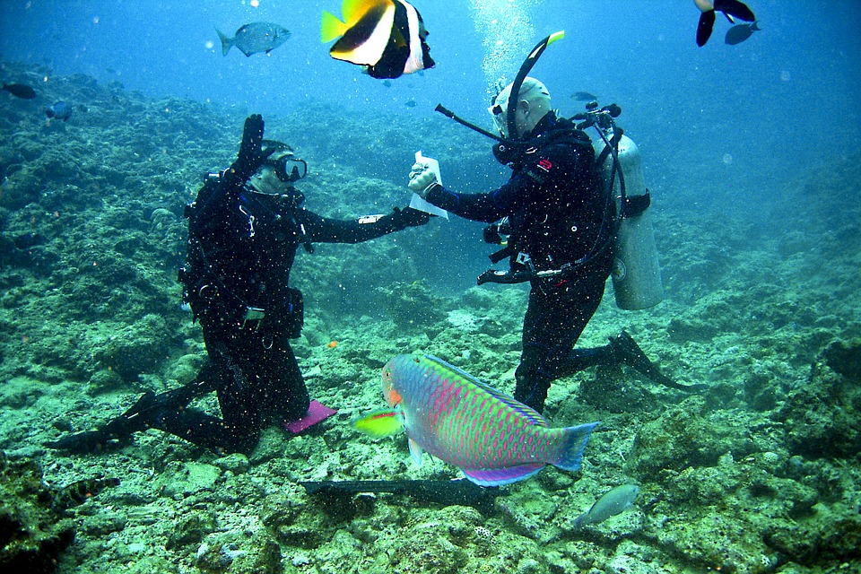 scuba-diving-maui.jpg