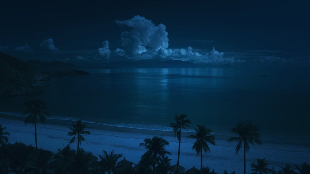 night-diving-maui-hawaii.jpg