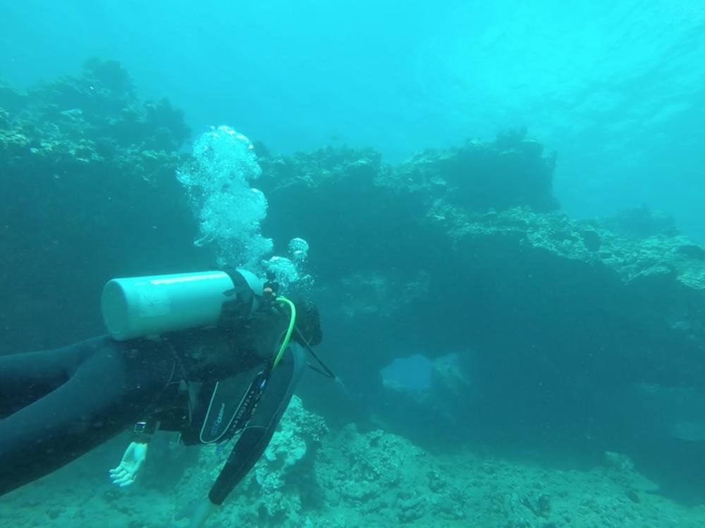 scuba-diving-maui-chris-brock.png