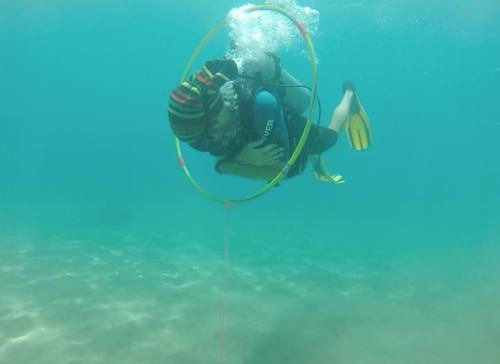peak-peformance-buoyancy-maui-scuba-diving.png