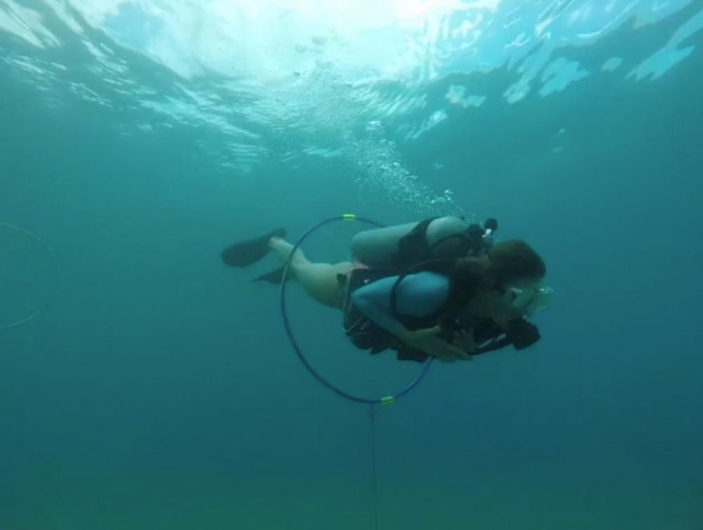 maui-scuba-diving-ppb-certification.png