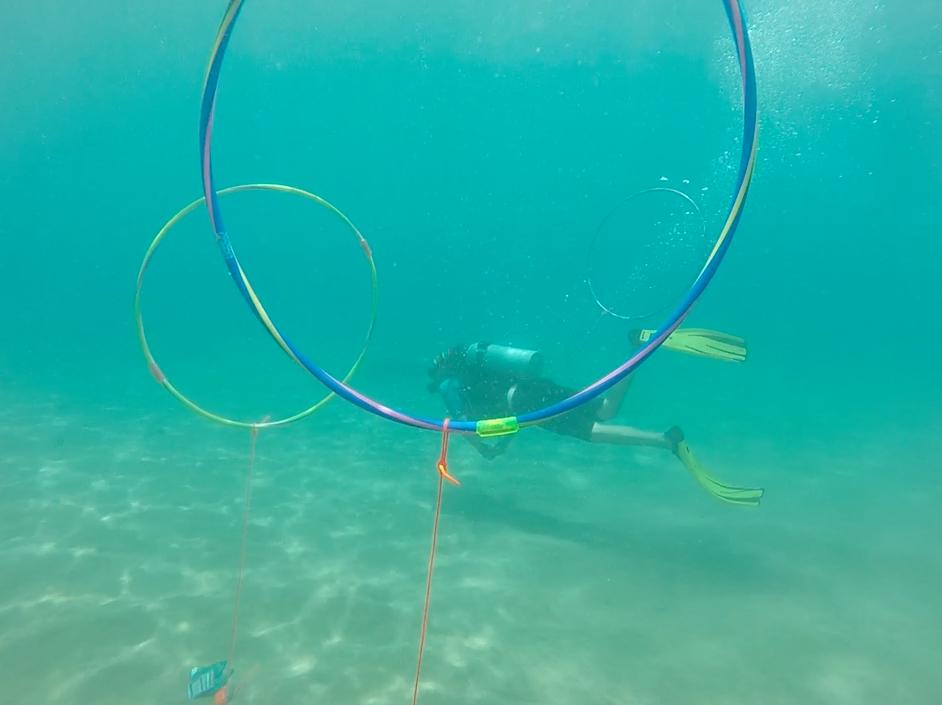 peak-performance-buoyancy-maui.png