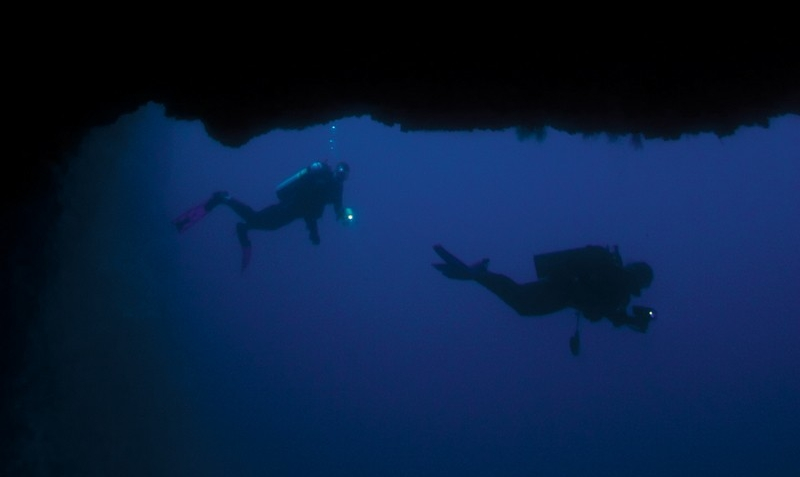 maui-night-dive.jpg