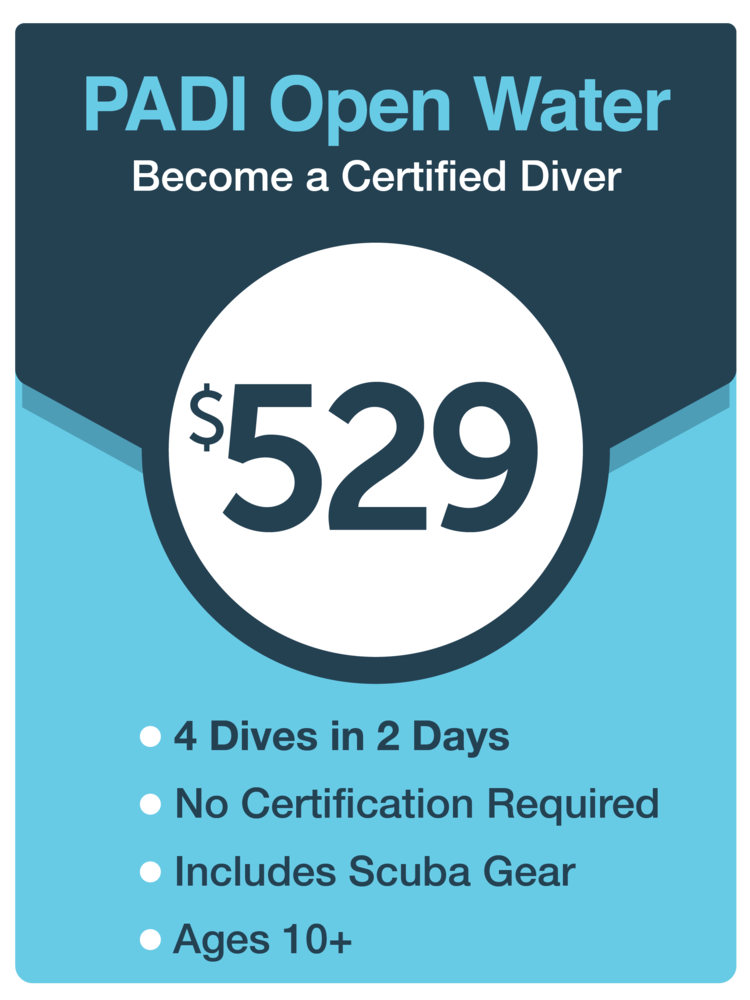 PADI Open Water Certification — Maui Scuba Diving Lessons, PADI ...