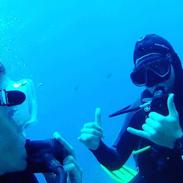 Awesome viz today! Coming to Maui this summer? Book your dives with me here 🤙 www.chrisbrockscuba.com