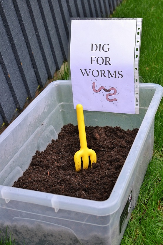 Bug Party Dig for Worms.jpg
