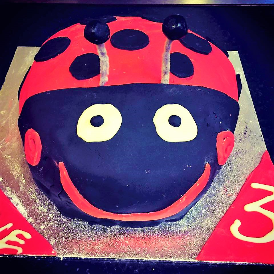 Kate's Gaston The Ladybird cake!