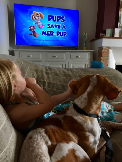 Rescue dog Five Little Stars