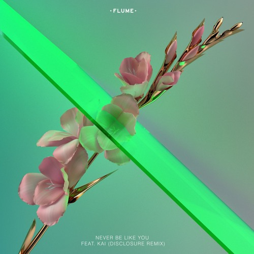 Flume Disclosure