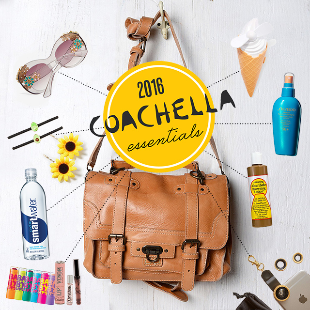coachella purse