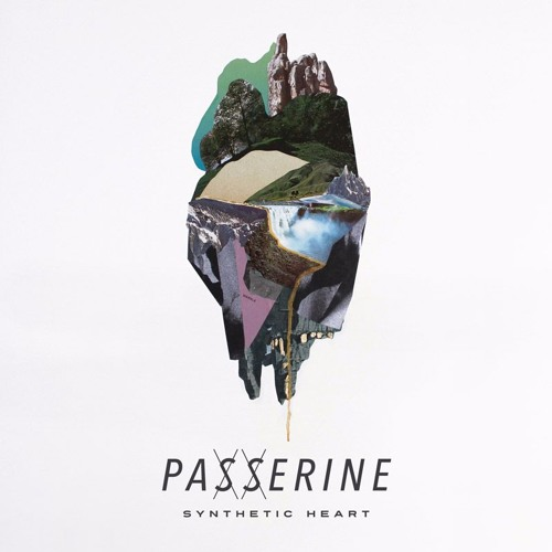 PASSERINE - Synthetic Heart