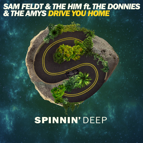 Sam Feldt The Him ft The Donnies The Amys - Drive You Home