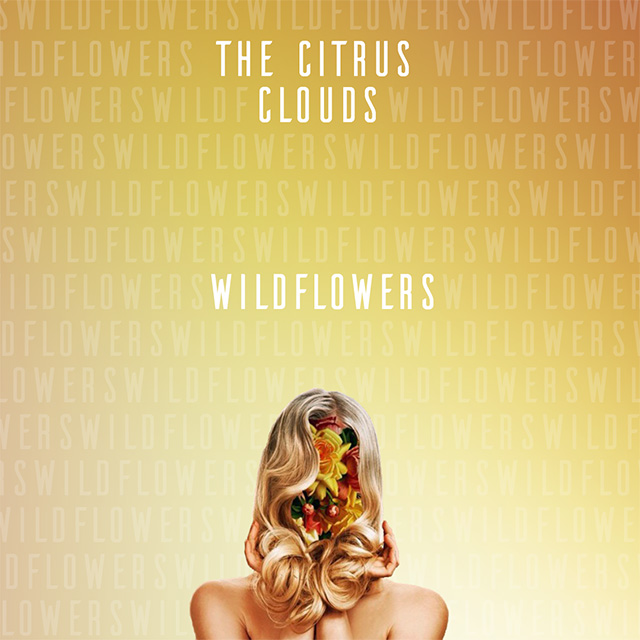 the citrus clouds wildflowers