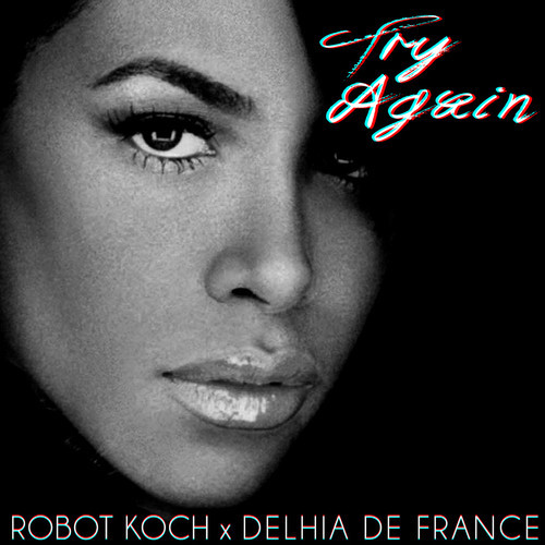Robot Koch x Delhia De France Try Again