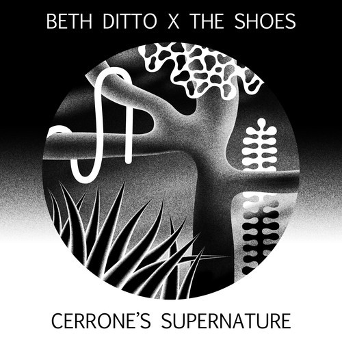 beth ditto the shoes