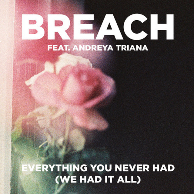 breach everything you never had