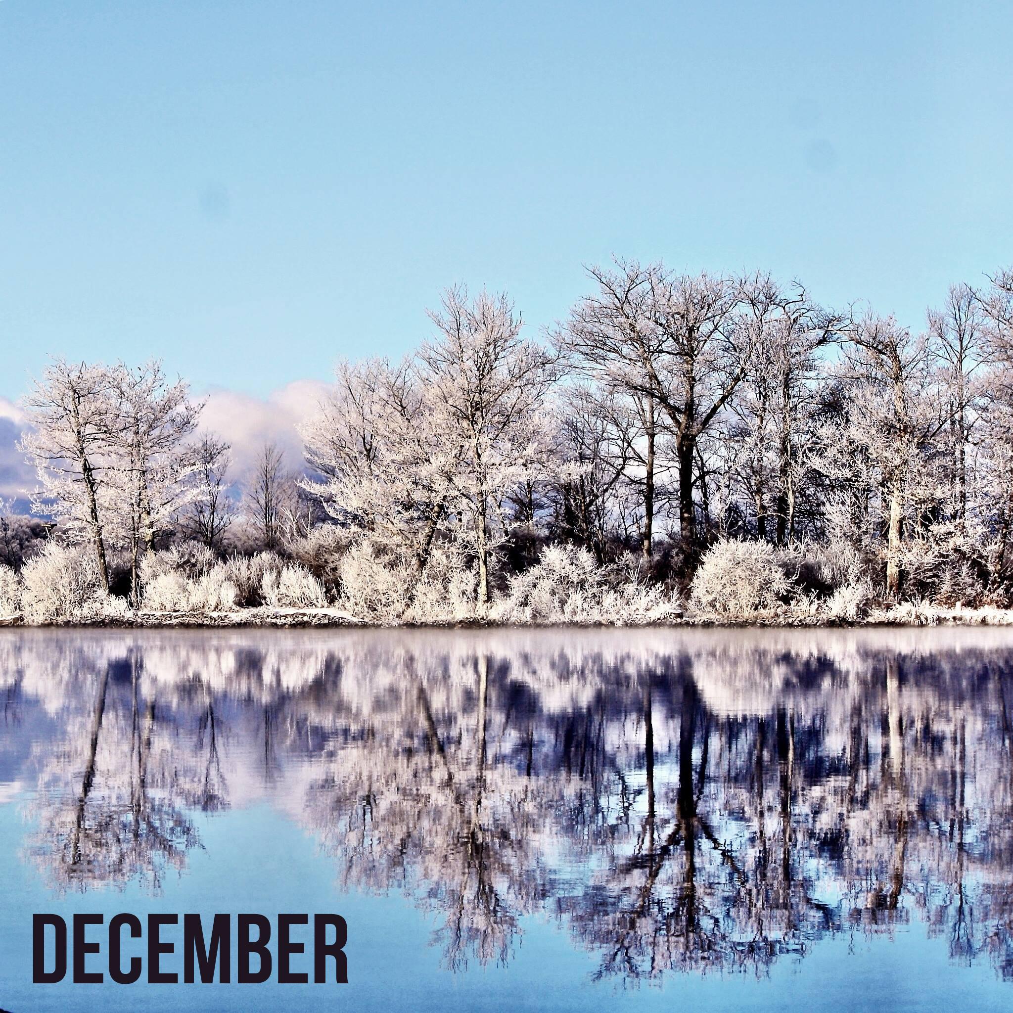 December Art