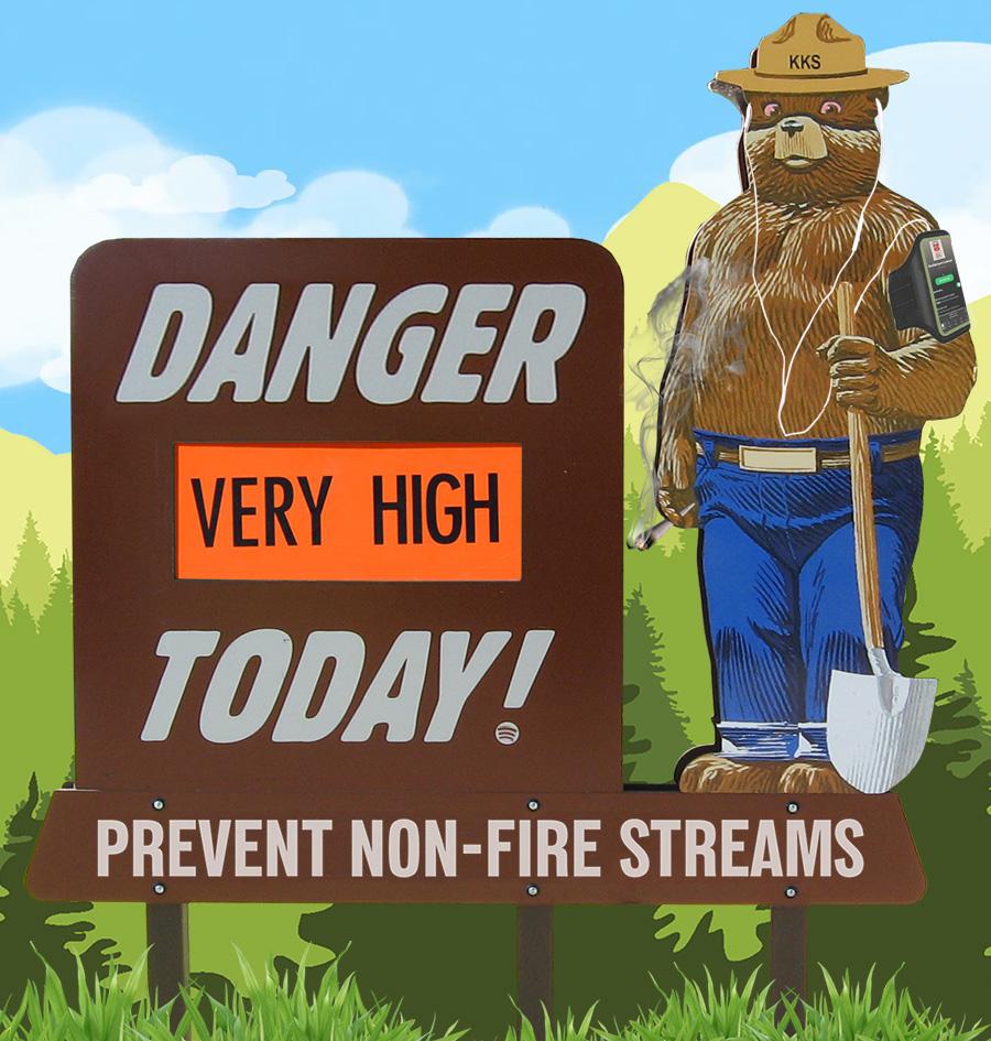 FIRE SMOKEY 900.jpg