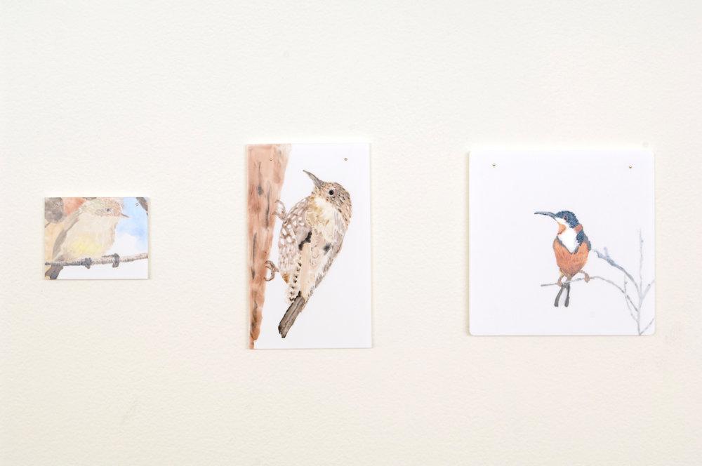 Tiles_Birds2.jpg